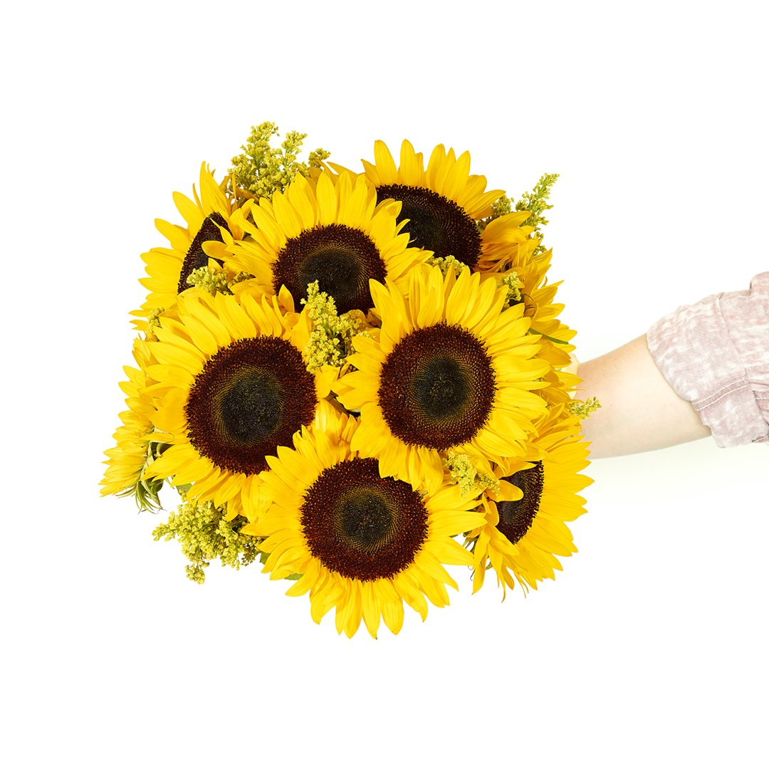 Flowers - Stunning Sunflowers (Free Vase Included)