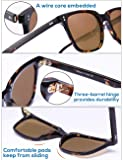 Carfia Chic Retro Polarized Womens Sunglasses UV400 Protection Hand-Polished Acetate Frame CA5354
