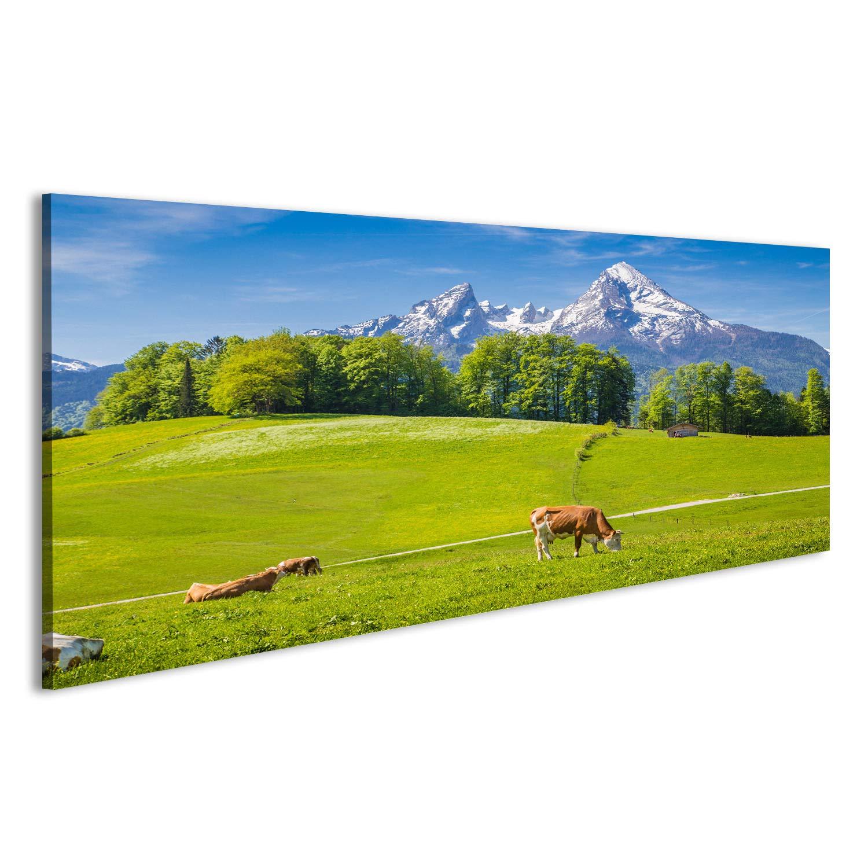 bilderfelix/® Bild auf Acrylglas Idyllische Sommerlandschaft in den Alpen mit Kuhstreifen auf frischen gr/ünen ALM Wandbild hochglanzpoliert Glasbild Poster DWO