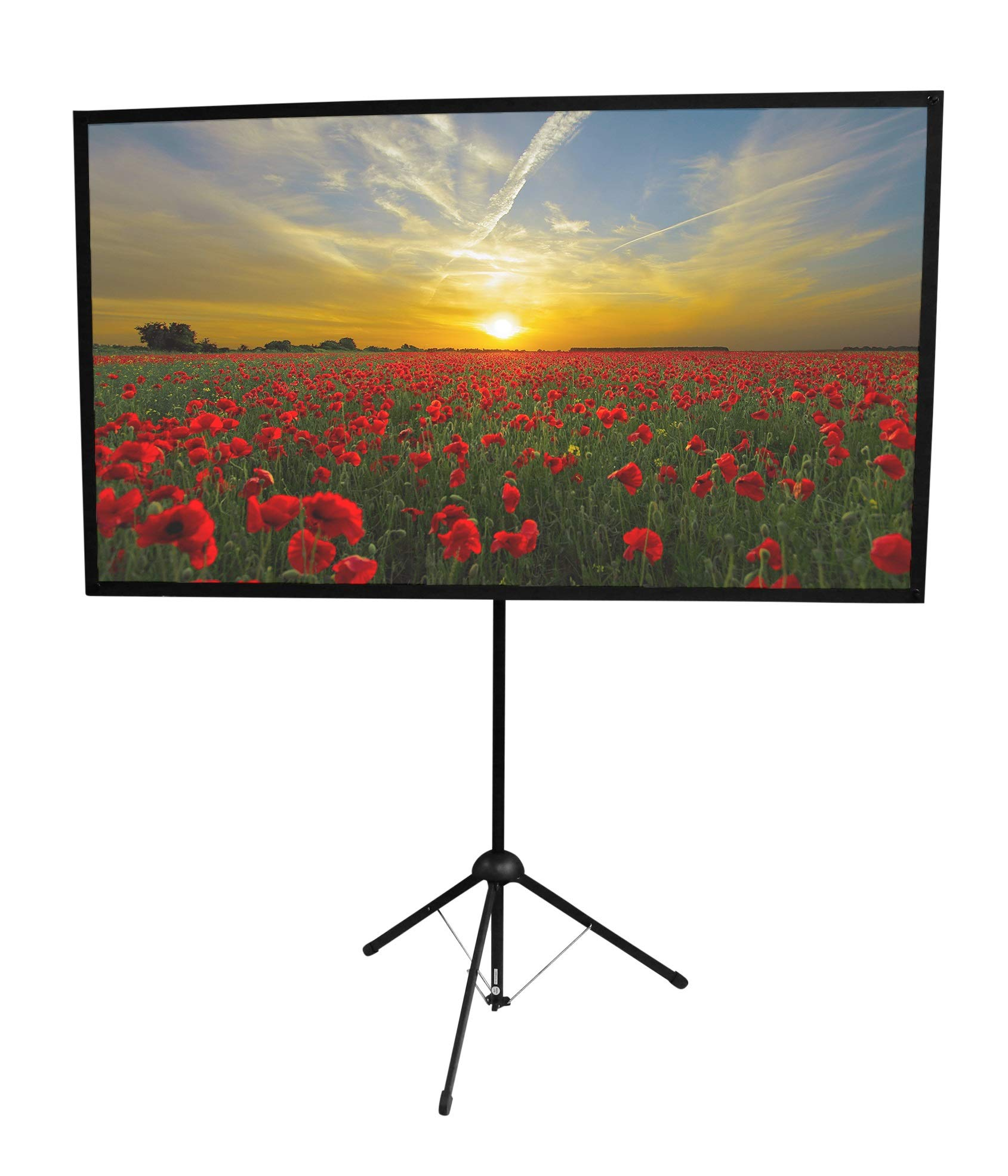 GO-70: 2-in-1 Projector Screen | 70 inch | Mounts on Tripod and Wall | 16:9 Format | 9 lbs | 2 Minute Setup | Includes Carrying Bag | for Mobile Presentation and Home Entertainment |4K Ultra HD Ready