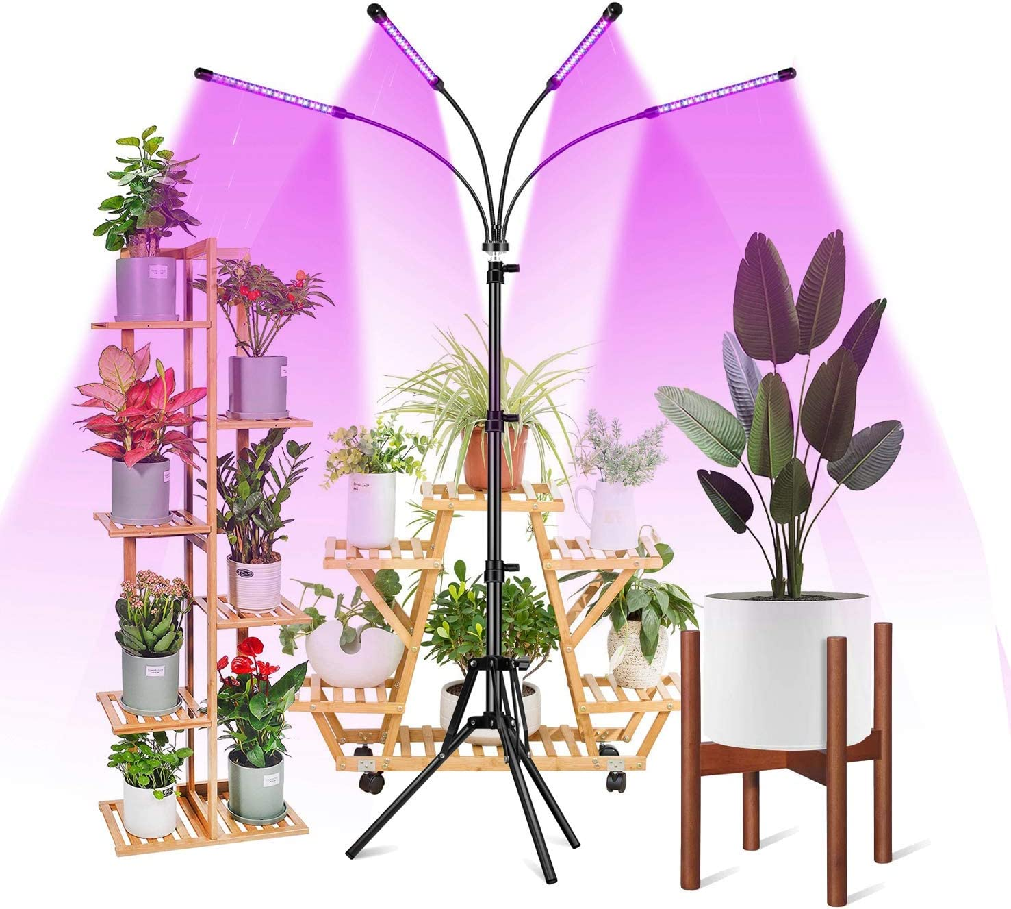 LED Grow Light with Adjustable Tripod, RHM Four-Head Grow Lights for Indoor Plant with Cycle Timer Remote Control Red Blue Mixed Spectrum 4 Lighting Modes 10 Level Dimming