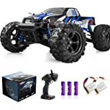 IMDEN Remote Control Car, Terrain RC Cars, Electric Remote Control Off Road Monster Truck, 1:18 Scale 2.4Ghz Radio 4WD Fast 3