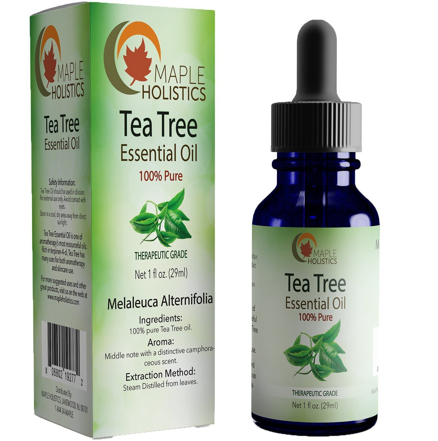 100% Pure Tea Tree Oil Natural Essential Oil with Antifungal Antibacterial Benefits For Face Skin Hair Nails Heal Acne Psoriasis Dandruff Piercings Cuts Bug Bites Multipurpose Surface Cleaner by Maple Holistics (Image #1)