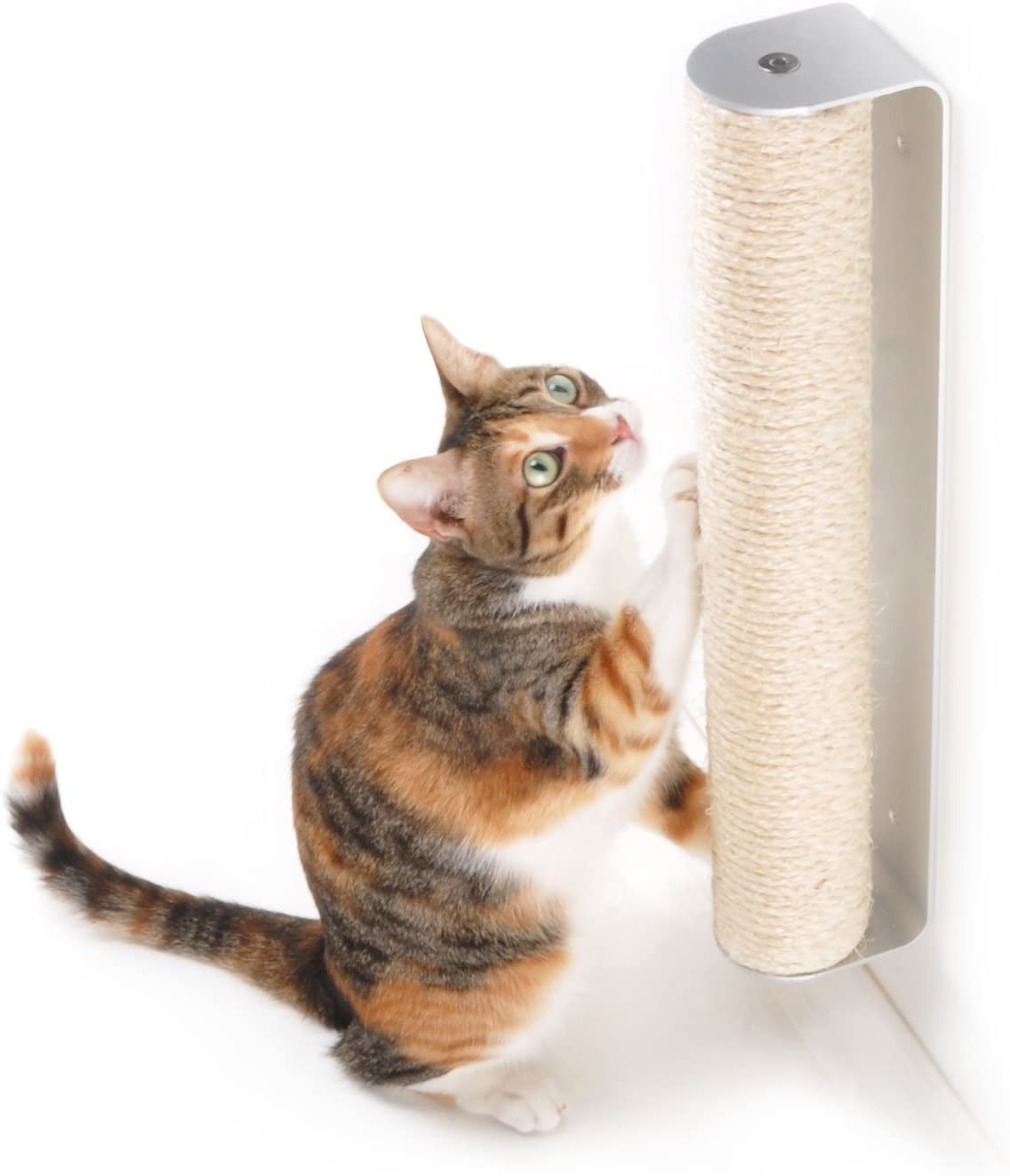 4CLAWS Wall Mounted Scratching Post