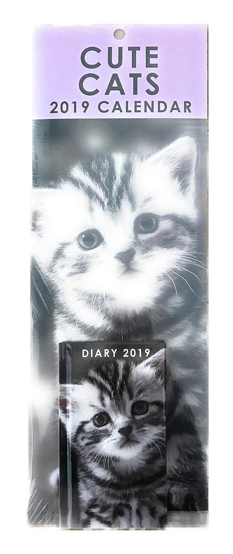 Juego de calendario y agenda de pared 2019 con diseño de ...