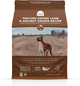 Open Farm Pasture-Raised Lamb & Ancient Grains Dry Dog Food, Fresh Grass-Fed Lamb Recipe with Wholesome Grains and No Artificial Flavors or Preservatives, 11 lbs
