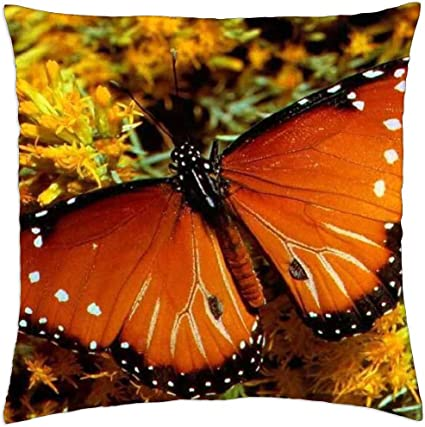 Irocket Orange Butterfly Throw Pillow Cover 18 X 18 45cm X 45cm Amazon Co Uk Kitchen Home