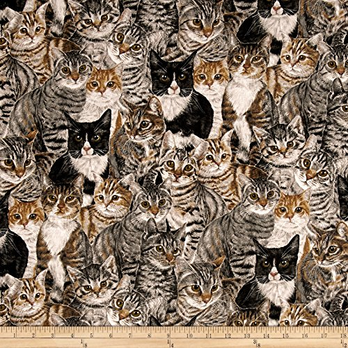 Cats The Way I Like It by Skipping Stones Studio Y2318 Multi Color Fabric By The Yard (Studio Stones Skipping)