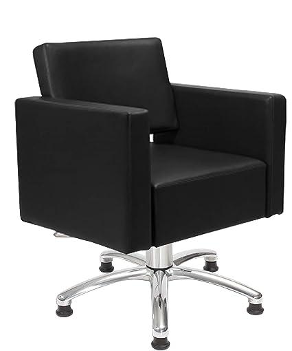 Layer Individual 35300154 Lady silla de peluquería Peluquería silla ...