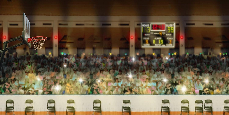 写真バックドロップ – Basketball Court – 20 x 10 ft。シームレスなファブリック   B00P1INGG6