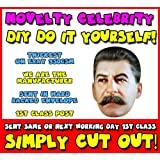 DIY - Do It Yourself Face Mask - Stalin Celebrity Face Mask