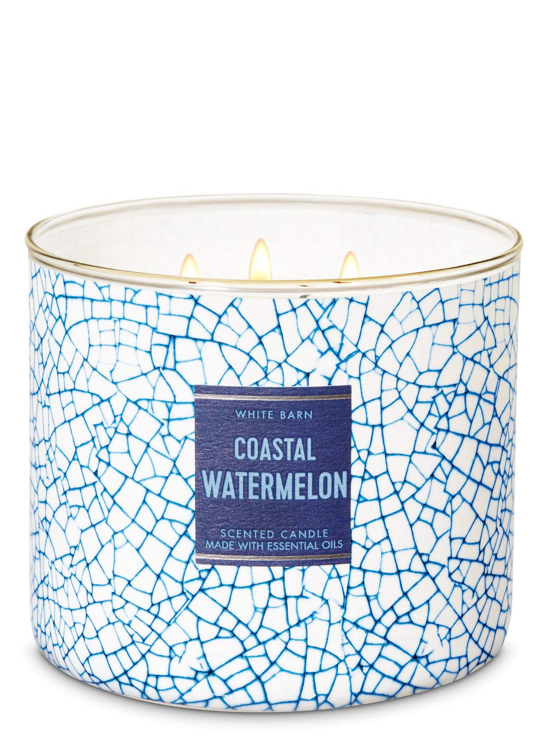 Bath & Body Works Coastal Watermelon 3 wick Scented Candle