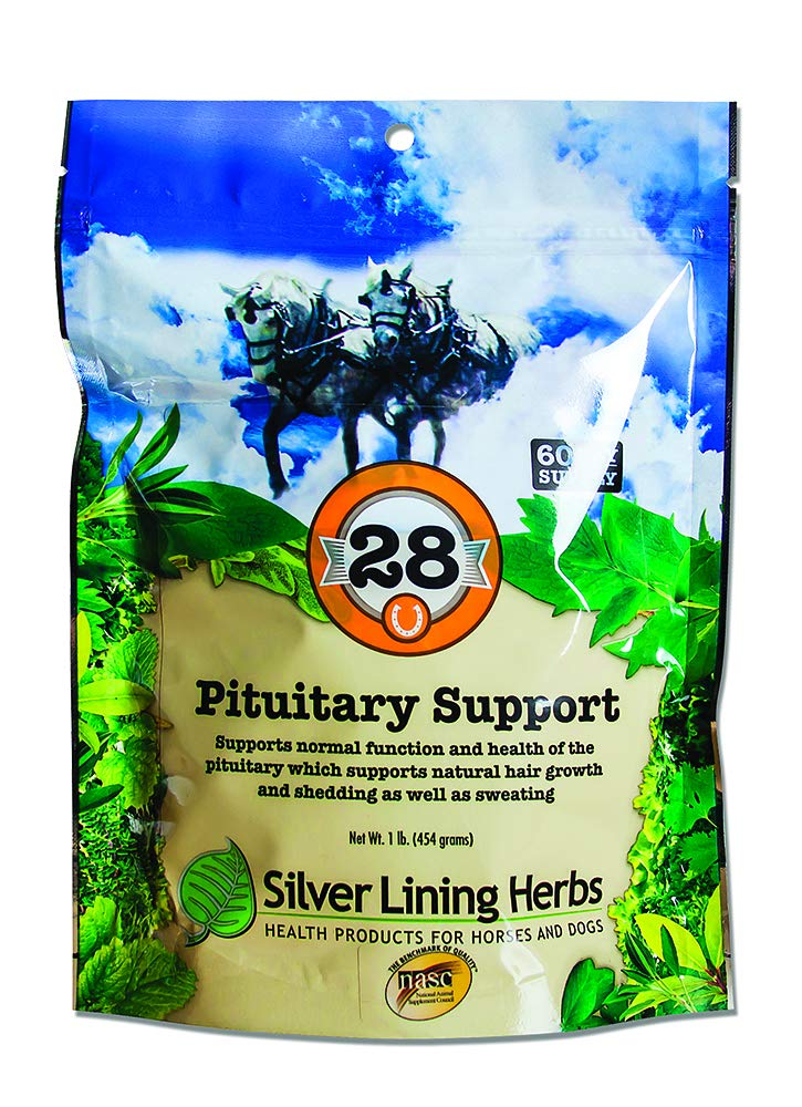 Pituitary Support | Supports Equine Normal Function and Health Of the Pituitary  |  May Help Pituitary  Dysfunction in Senior Horses | Made In The USA Of Natural Herbs by Silver Lining Herbs by Silver Lining Herbs