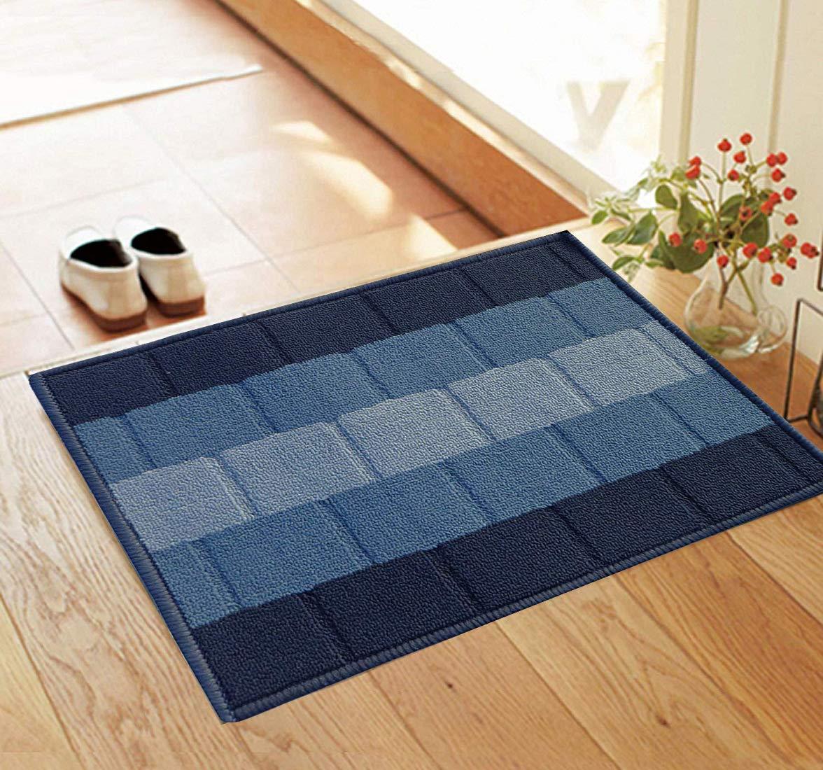 Status Polypropylene Anti Slip Floor Door Mat in Home Kitchen Office Entrance Mats ( 38x58 cm) (Blue)
