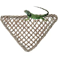 Seaweed Lizard Mesh Hammock Swing Toy Pet Lounger Reptile Hanging Bed Mat for Small Animal Anoles Bearded Dragons Geckos Iguanas Hermit Crabs Reptile Accessories