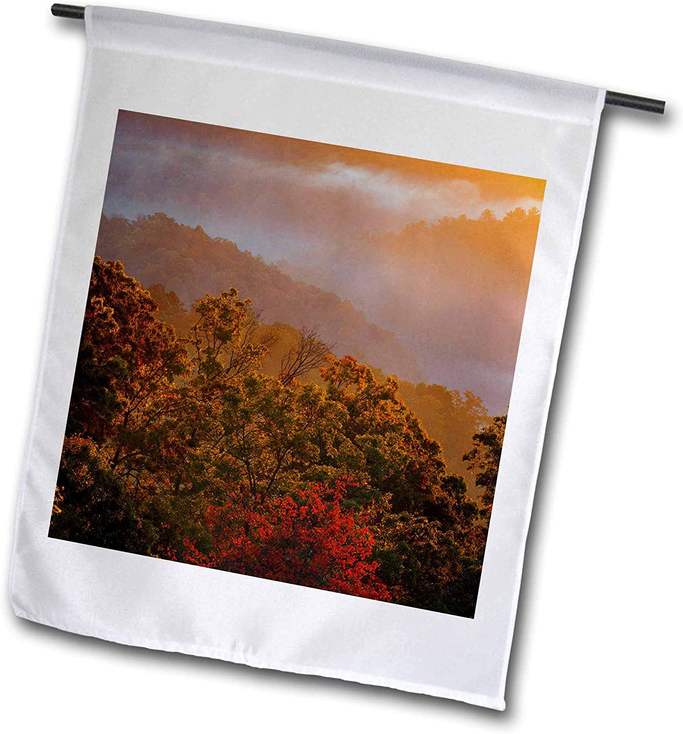 3dRose Danita Delimont - Autumn - USA, Tennessee. Great Smoky Mountain NP, Trees and Fog at Sunrise. - 12 x 18 inch Garden Flag (fl_315025_1)