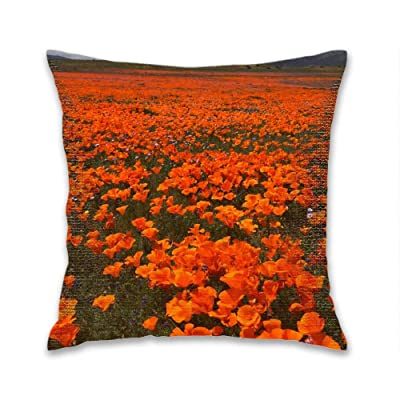 FEDDIY Last Bloom Outdoor Square Decorative Throw Pillow Covers Cases Cushion Home Decor for Couch Sofa Patio, 18 x 18 Inches: Home & Kitchen