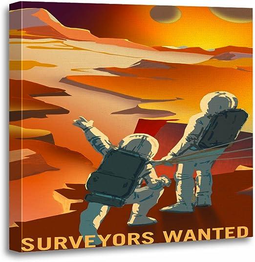 NASA SPACE JOB SURVEYORS Poster Canvas art Prints