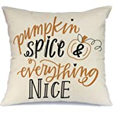 AENEY Fall Pumpkin Throw Pillow Cover with Quote Pumpkin Spice and Everythig Nice 18 x 18 for Couch Autumn Decorations Farmhouse Home Decor Decorative Pillowcase Faux Linen Square Cushion Case