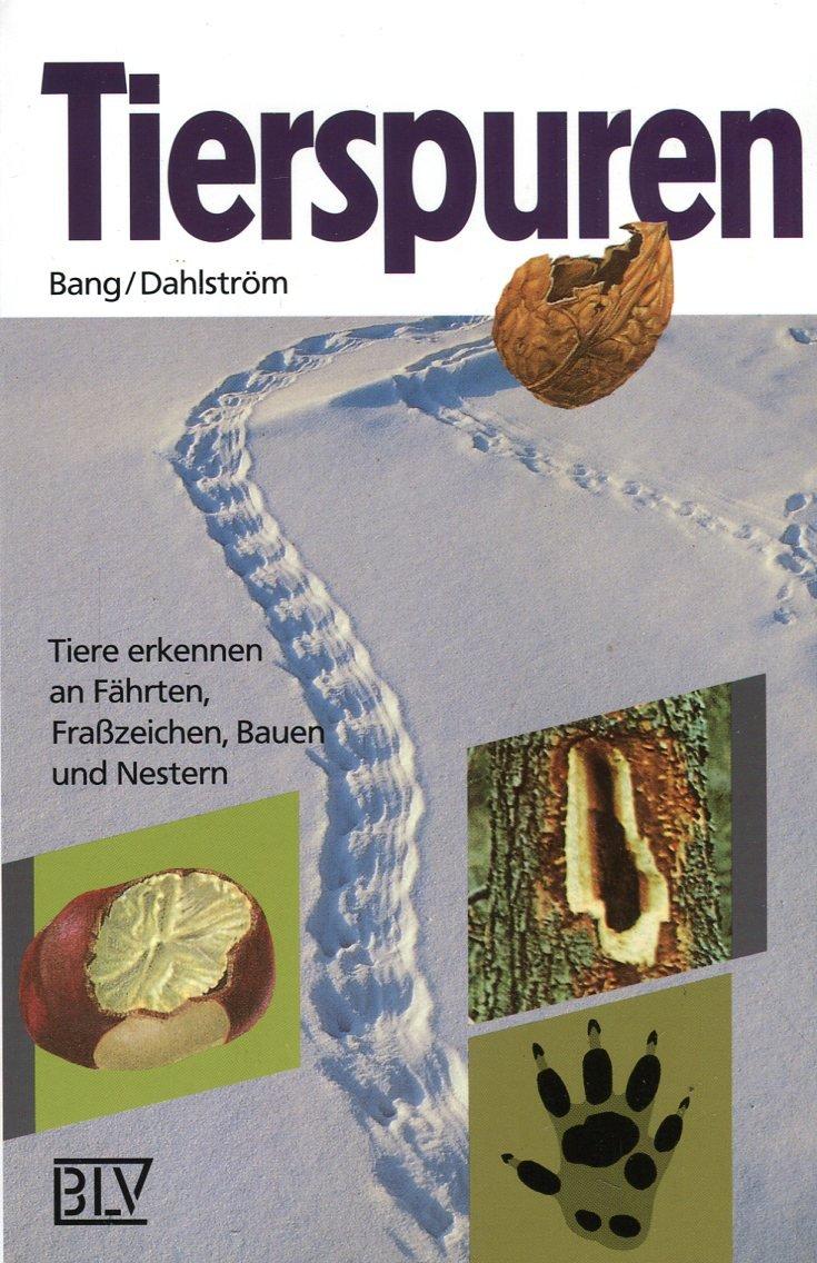tierspuren-6673-368-tiere-erkennen-an-fhrten-frasszeichen-bauen-und-nestern