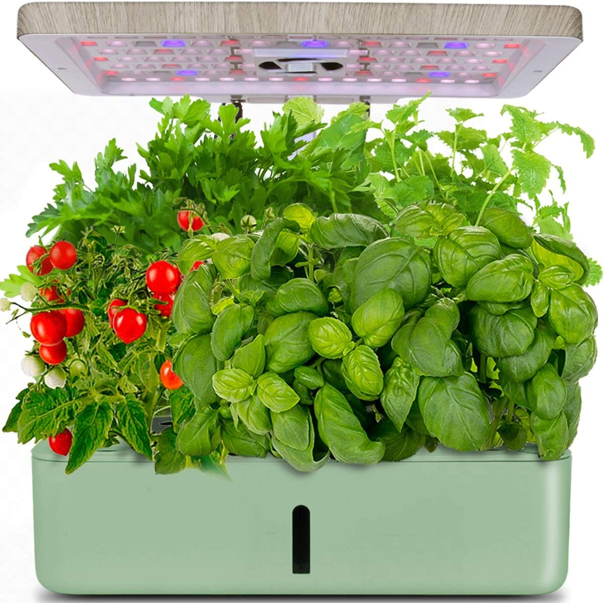 moistenland Indoor Hydroponic Garden, Hydroponics Growing System, Indoor Herb Garden Starter Kit with LED Grow Light, Inside Garden Growing System,Automatic Timer Plant Germination Kits (12 Pods)