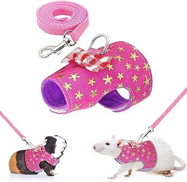 Cettkowns - Arnés de Senderismo para Mascotas pequeñas, con Correa ...