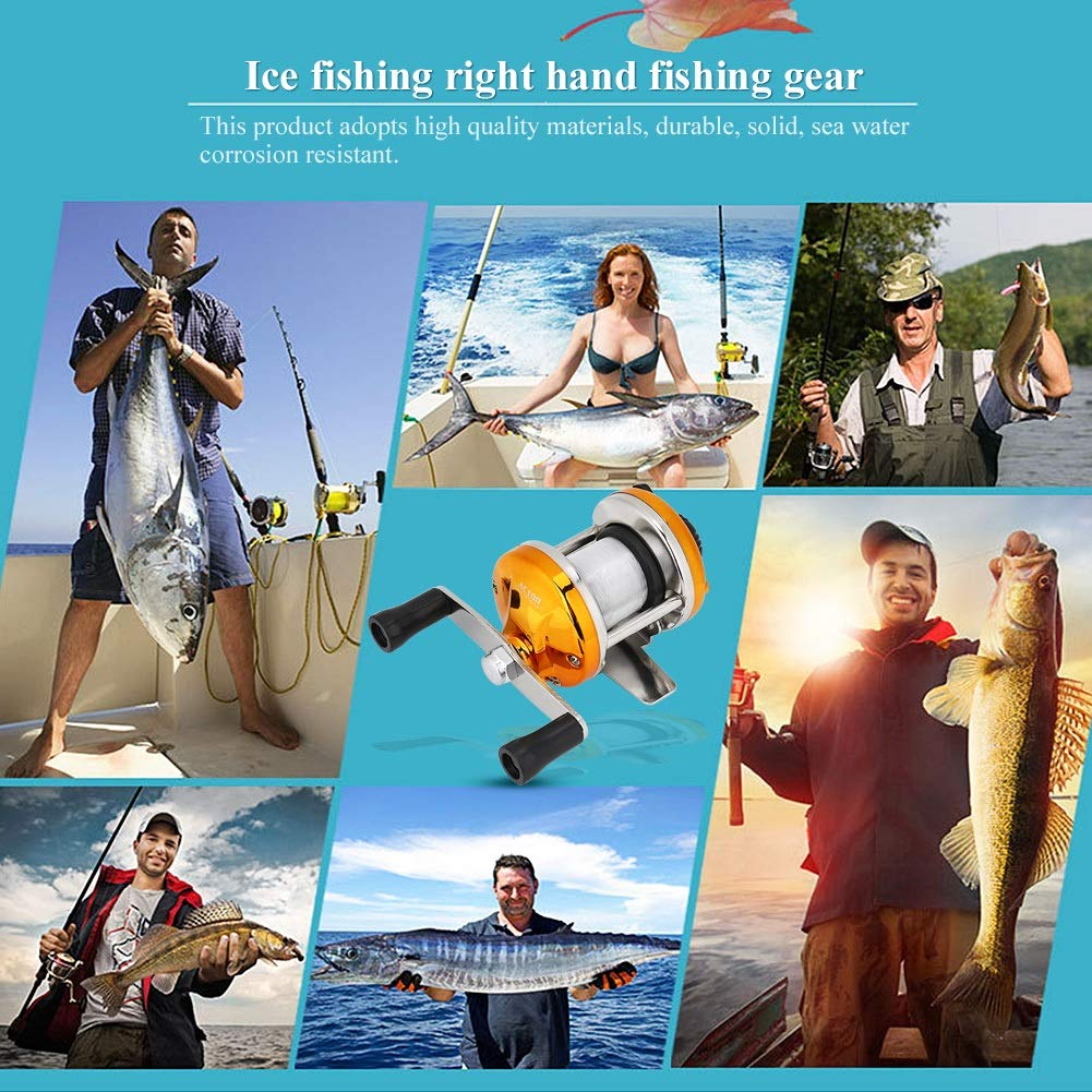 OKBY Spinning Reel Winter Ice Casting Carrete de ca/ña de Pescar Ligero y port/átil con l/ínea Tackle Accesorio