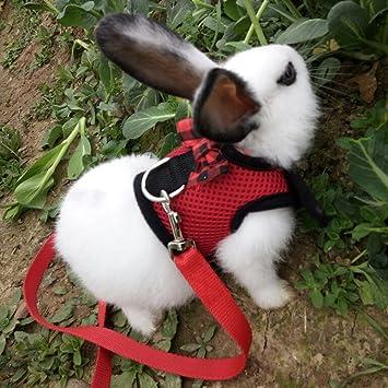 Bunny Freedom naked 678