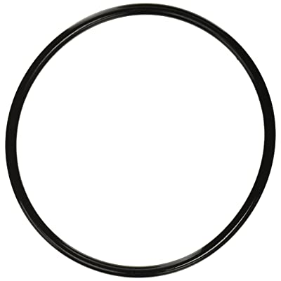Pentair 350013 Lid O-Ring Replacement Pool and Spa Pump: Garden & Outdoor
