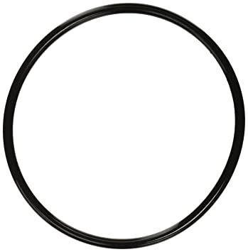 Pentair 350013 Lid O-Ring Replacement Pool and Spa Pump: Amazon.ca ...