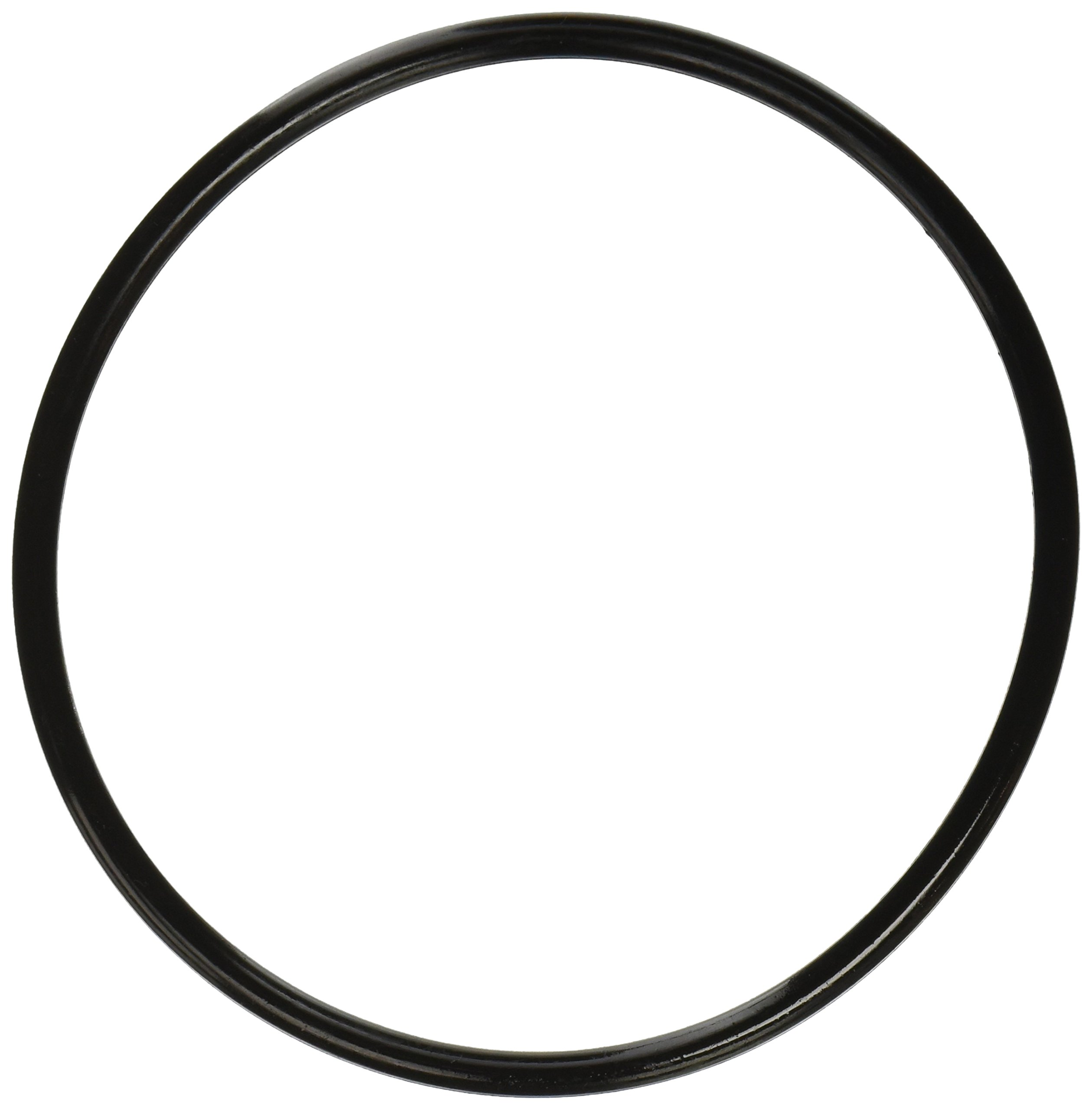 Pentair 350013 Lid O-Ring Replacement Pool and Spa Pump