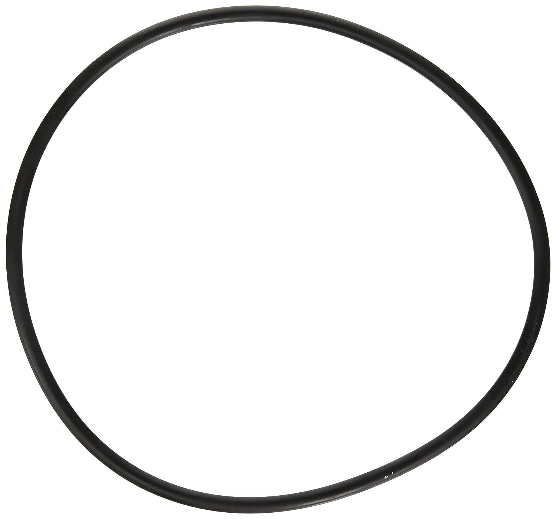 Fluval  Seal Ring
