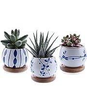 T4U 7cm Cerámico Suculento Maceta Cactus Flor Macetas Envase Plantas con Bandeja de Bambú Juego Completo