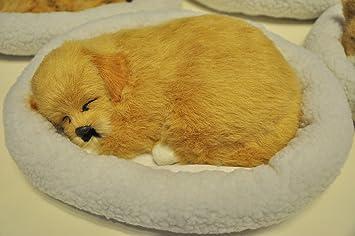 Amazon.es: Respiración dormir gato perro dormido (adorno de pan animados Kid juguete mascota decorar