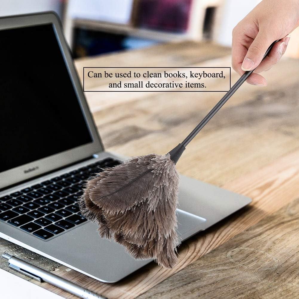 Mini plumeau fait /à la main lavable r/éutilisable plumeau dautruche pour livres clavier bureau maison Plumeau dautruche