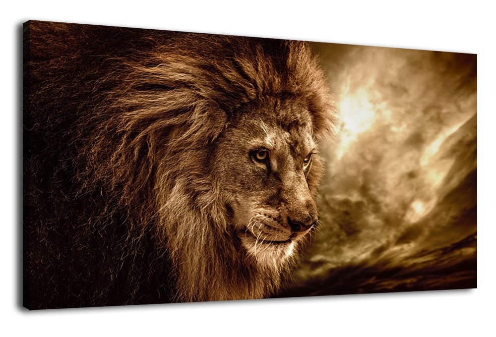 arteWOODS Canvas Wall Art Lion Portrait Painting Canvas Pictures Long Canvas Artwork Wild Animal Brown Stormy Sky Wall Art for Home Office Decoration Framed Ready to Hang 20'' x 40''