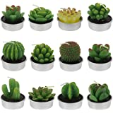 Hysagtek 12 Pcs Cactus Tealight Candles Cute Mini Succulent Plants Candles for Birthday Christmas Festival Party Wedding Spa Home Decoration Gifts, 12 Styles