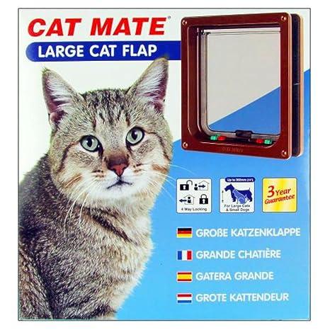 Gato amigo grande Shari clubking desarrollado especialmente para los más grandes como gatos o perros pequeños