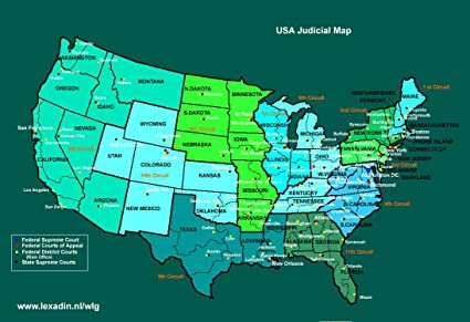 Amazon.com: Home Comforts Laminated Map - Courts Cases USA Lexadin on