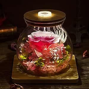 Flor Inmortal Rosa Caja De Cristal/Deseando Botellas DIY