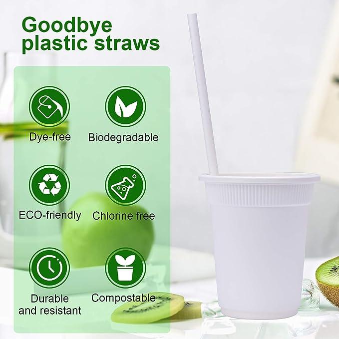 Juegos de vajilla desechables de 400 piezas, Platos biodegradable ...