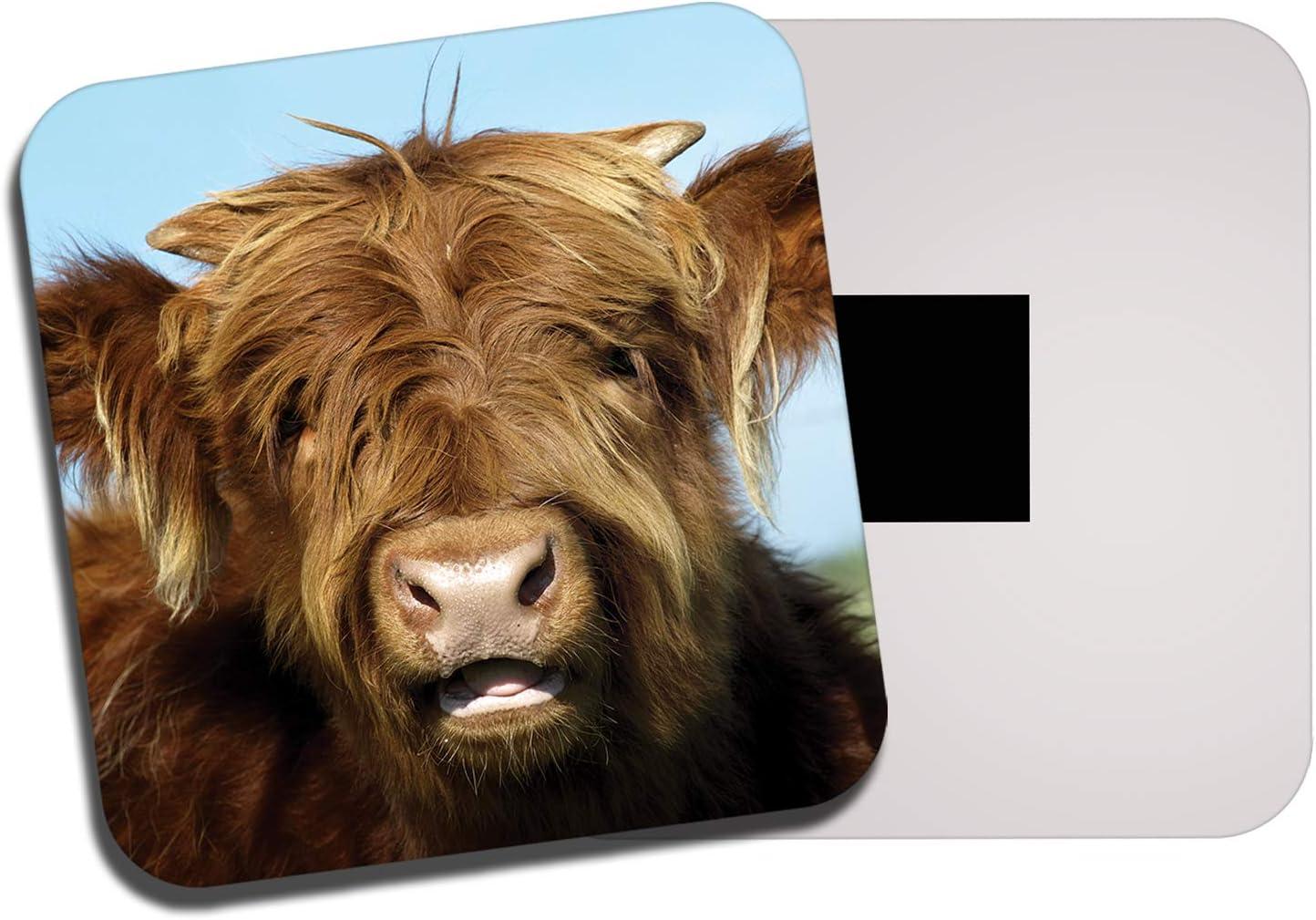 DestinationVinyl Ginger Highland Cow Fridge Magnet - Cattle Funny Scotland Animal 8234