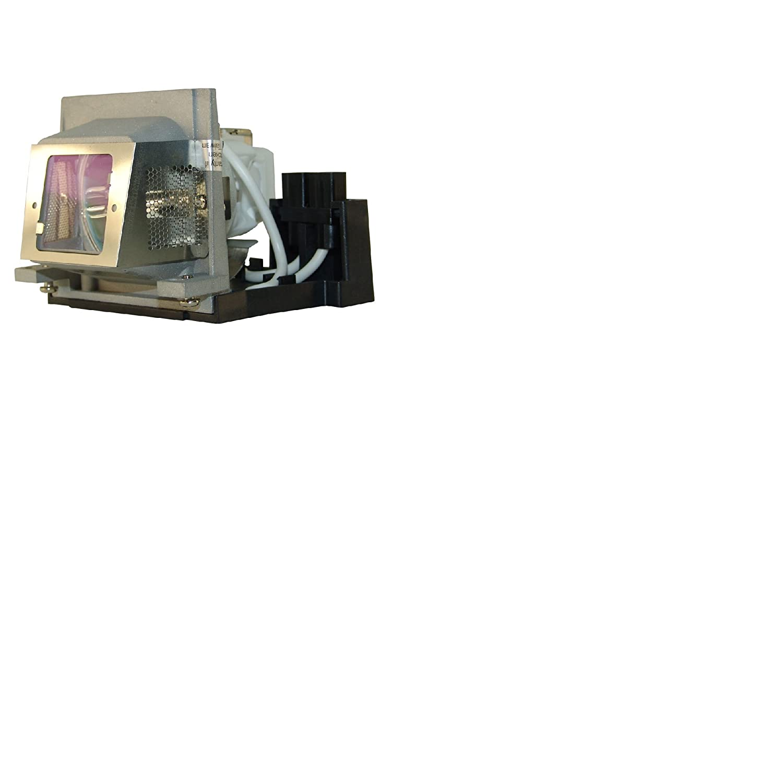 Amazing Lamps RLC-018 純正電球 互換ハウジング付き   B01K8RBDB4