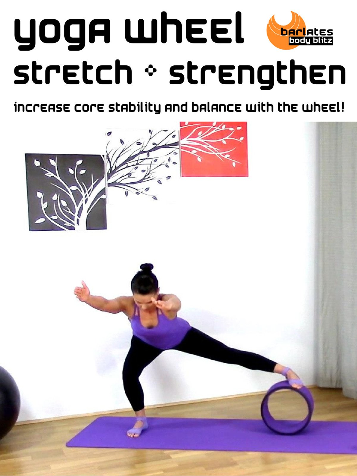 Amazon.com: Barlates Body Blitz Yoga Wheel Stretch and ...