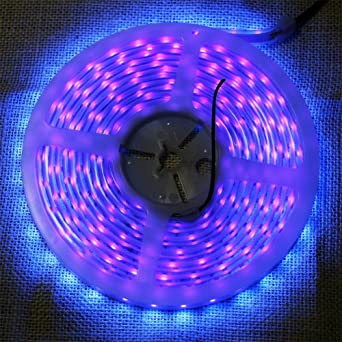 Ffnw waterproof led uv light strip 5m164ft 3528 smd 395nm 405nm ffnw waterproof led uv light strip 5m164ft 3528 smd 395nm 405nm blacklights aloadofball Image collections