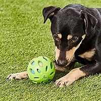 Deals on JW Pet Dog Ball