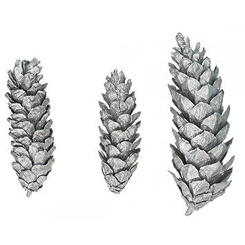 6 natürliche Tannenzapfen - 17 cm - Silber - Pinecone Strobus ...