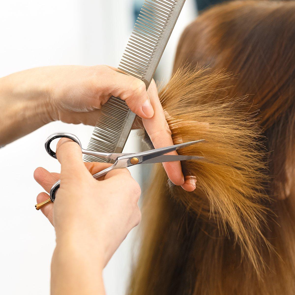 Professional BarberSalon Razor Edge Hair Cutting ScissorsShears 6  Inch Forged with Fine Adjustable