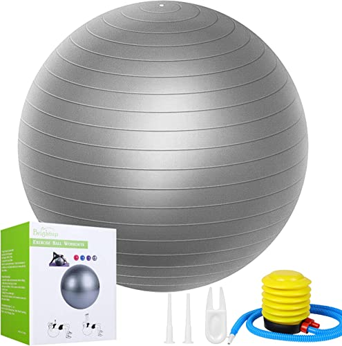 Exercise Balls 65CM Fitness Workout Ball
