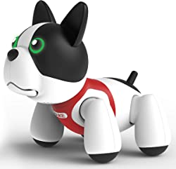 Top 10 Best Robot Pets For Kids (2021 Reviews & Buying Guide) 2